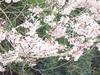 Kakudai_20060326